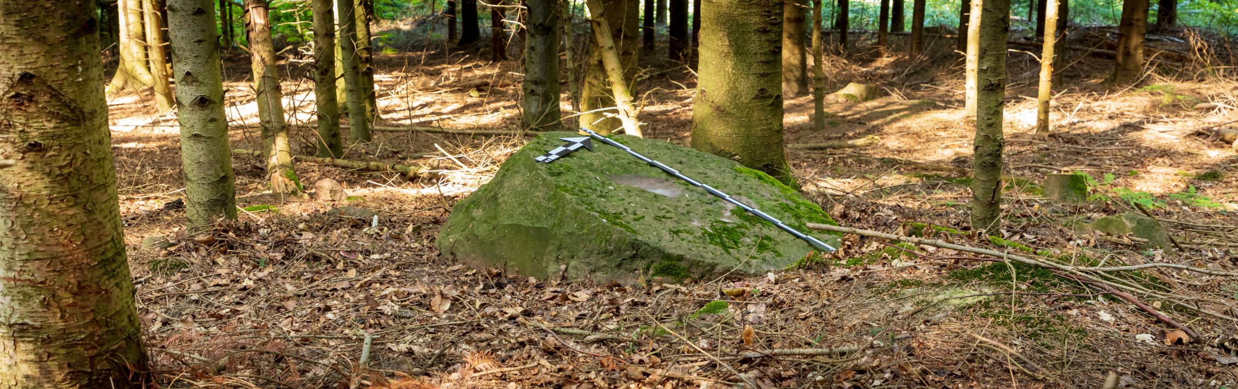 Rohling eines Mühlsteins. Zeitzeugen der mittelalterlichen Mühlsteinproduktion im Bleichtal.